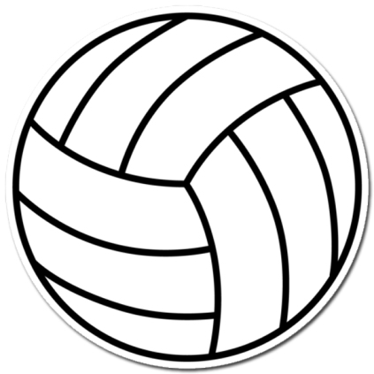 Volleyball Image Sticker