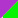 Electric Purple/Electric Green
