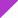 Electric Purple/White