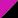 Tropic Pink/Black