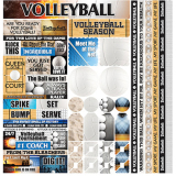Volleyball Graphic Sticker Sheet - Large